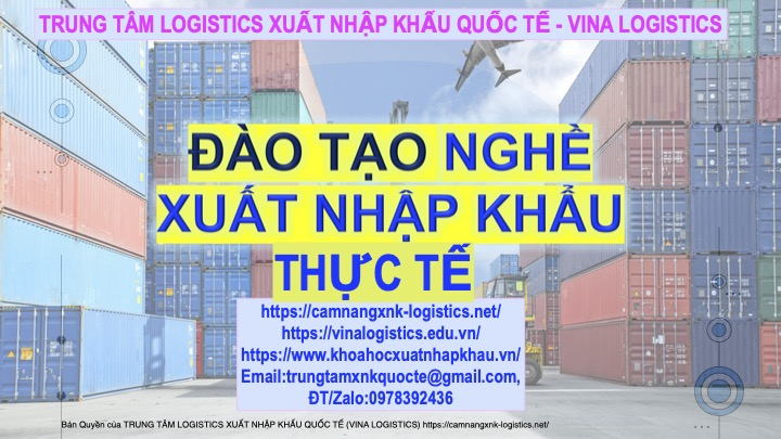camnangxnk-logistics.net
